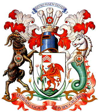 cardiff city arms