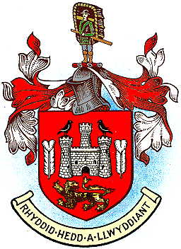carmarthen tc arms