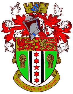 carmarthen rdc arms