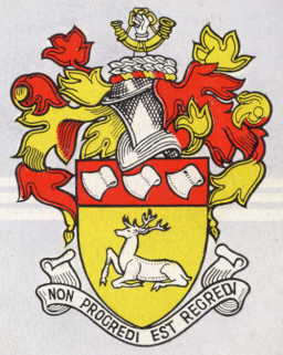 chigwell udc arms