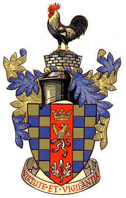 dorking udc arms