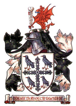 flintshire cc arms
