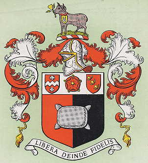 goldalming tc arms