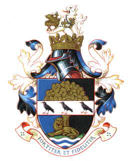 guildford rdc arms