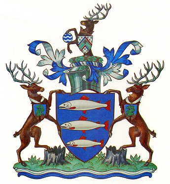 kingston upon thames lb arms