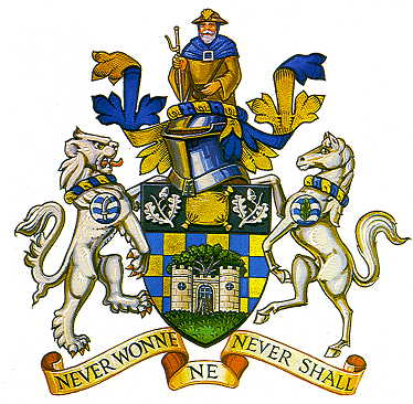 reigate and banstead bc arms
