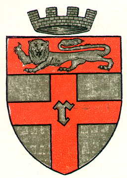 rochester city arms