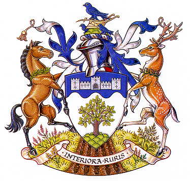 wealden dc arms