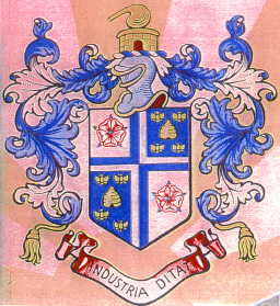 widnes bc arms