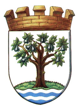 photo of Worcestershire Coat of Arms